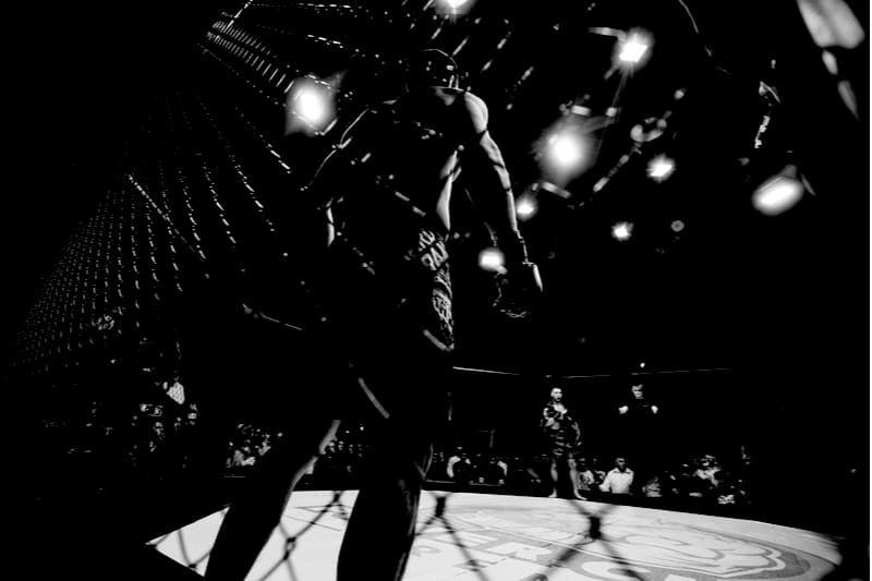 ufc lutador bodog
