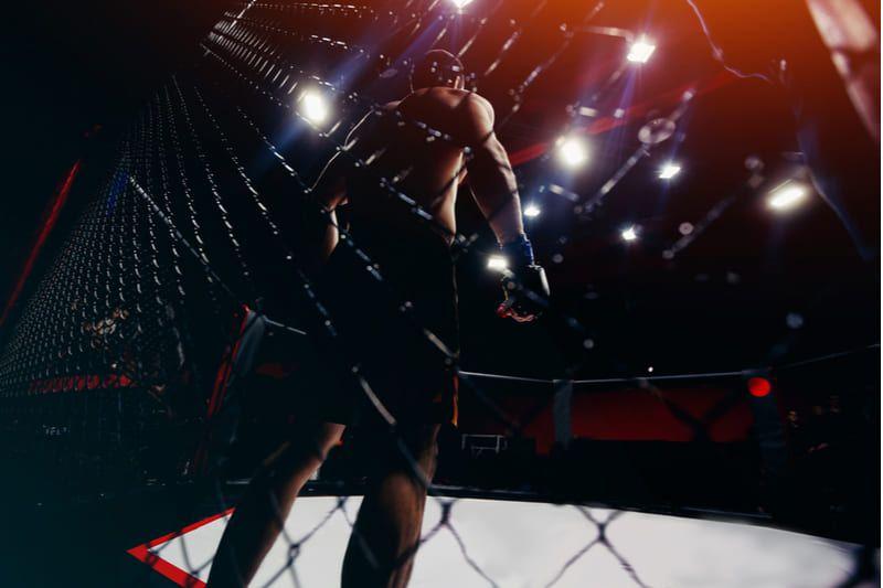 lutador ringue bodog