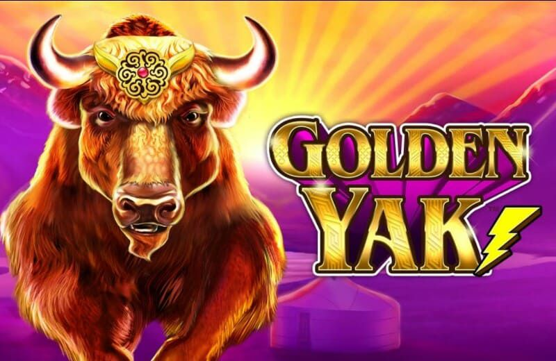 golden yak caca niquel bodog 1