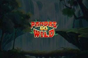 pandas go wild slot