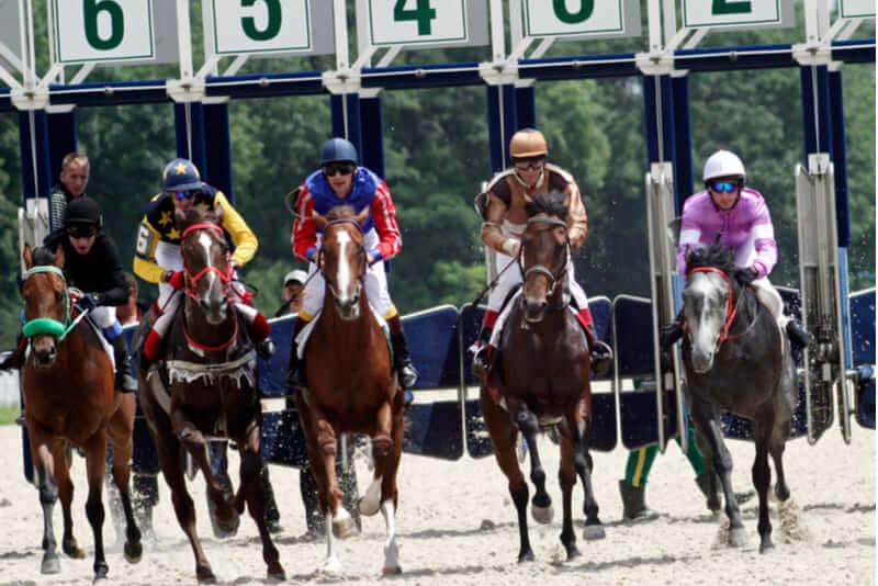 apuesta carrera caballos