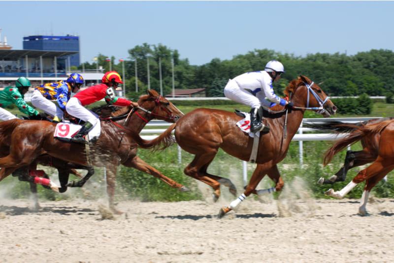 ganar dinero carrera caballos
